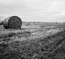 Fields of Hay Near Slains Castle by CasioKayleigh