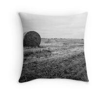 Fields of Hay Near Slains Castle Throw Pillow