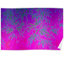 Bright Leafy Abstract Poster