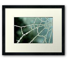 Winter Web Framed Print