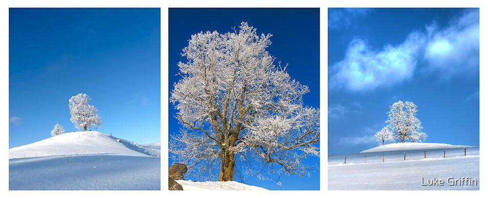 Single Treesome by Luke Griffin