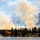 Fires in Grand Teton by Robert Kelch, M.D.