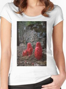 Snow Blossoms Women's Fitted Scoop T-Shirt