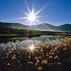 Tidal River Sunburst by Travis Easton