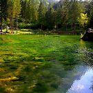 Lake of the Peschiere by annalisa bianchetti