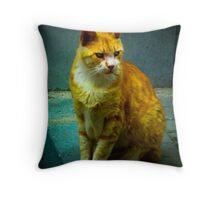 Street Cat in Istanbul Throw Pillow