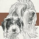 Old English Sheepdog Father & Son by BarbBarcikKeith