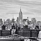 We'll Have Manhattan by Lanis Rossi
