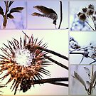 Snow weeds collage by Tarolino