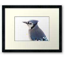 Snowy Blue Framed Print