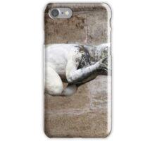 Gargoyle Water Spout iPhone Case/Skin