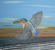 Kingfisher of Eftalou by Eric Kempson