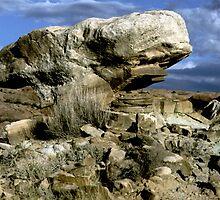 Mushroom Rock by KurtKeller