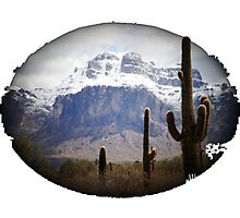 Superstition Mountain in January Photographic Print