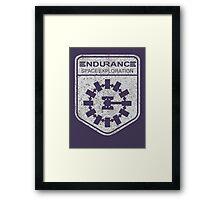 vintage Endurance stamped (light print) Framed Print