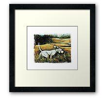 Hunting Dogs Framed Print