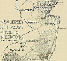 Old map of Jersey by franceslewis