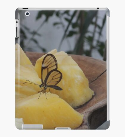 Transparency is a Wonderful Thing iPad Case/Skin