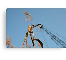 As Tall As A Crane Canvas Print
