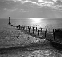Hove Groyne by Steve Churchill