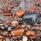 Rocks of Lake Superior 2 by Jimmy Ostgard