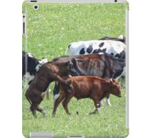 When in the country... iPad Case/Skin
