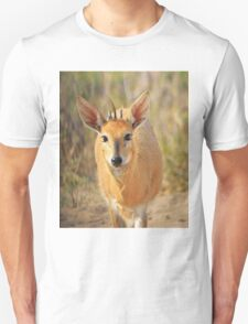 Duiker Ram - Wildlife Curly Cuteness  T-Shirt