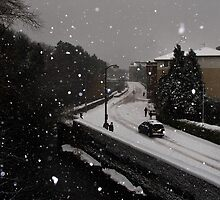 Edinburgh Snow 2010 by Chris Clark