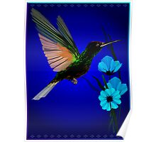 Green Hummingbird-Blue Flowers Poster
