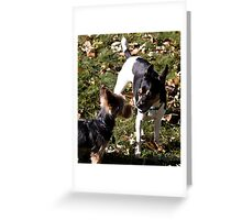 Come on, are you really a dog? Greeting Card