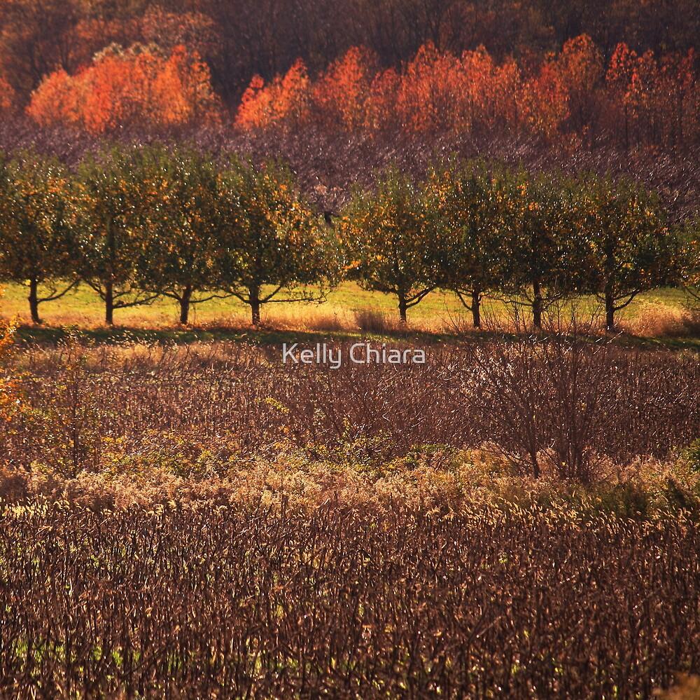 Painted Seasons by Kelly Chiara