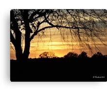 Twilight Shadows - Tree silhouette in golden sunset Canvas Print