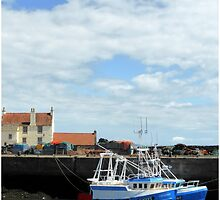 The Harbour East Neuk Fife by MY Scotland