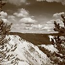 Grand Canyon of Yellowstone by Frank Romeo