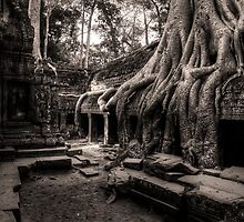 Angkor Wat - Part 4 by Anthony and Kelly Rae