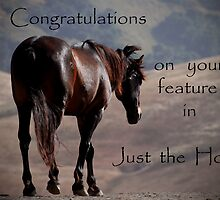 Feature Banner Entry by Sue Ratcliffe