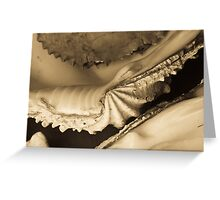 Pearls and shells Greeting Card