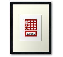 5318008 Boobies Framed Print