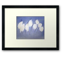 Hare Tail Cottongrass Framed Print