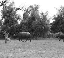 Village Girl - Running with the wild by gundip