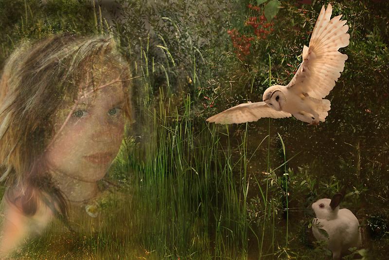 Two Worlds by byronbackyard