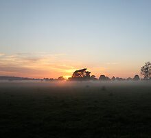 Sunrise of Oxley #3 by Jodie Bennett
