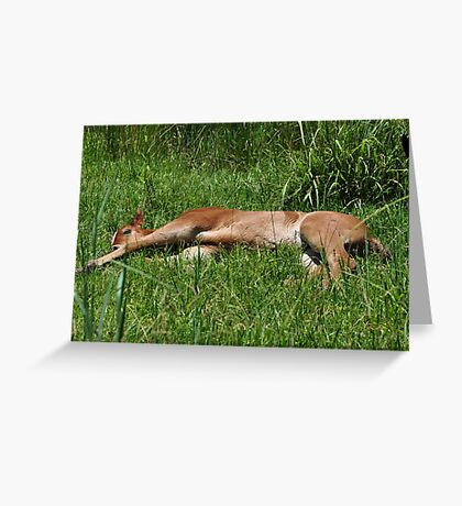 Plumb Tuckered Out. Greeting Card