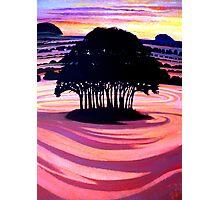 Glory Fields, Wiltshire Landscape  Photographic Print