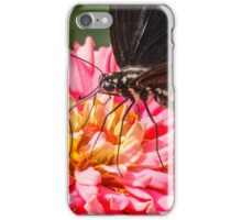 Butterfly on Pink iPhone Case/Skin