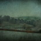 Across the Fields by Catherine Hamilton-Veal  ©