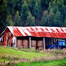 Old Barn by Elaine Game