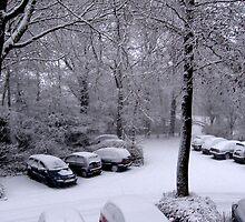 snowy scape by schaduwvacht