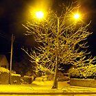Tree of Light by trish725