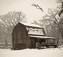 COUNTRY WINTER by Sandy Stewart